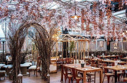 Tree, Branch, Building, Table, Restaurant, Architecture, Winter, Furniture, Room, Interior design,