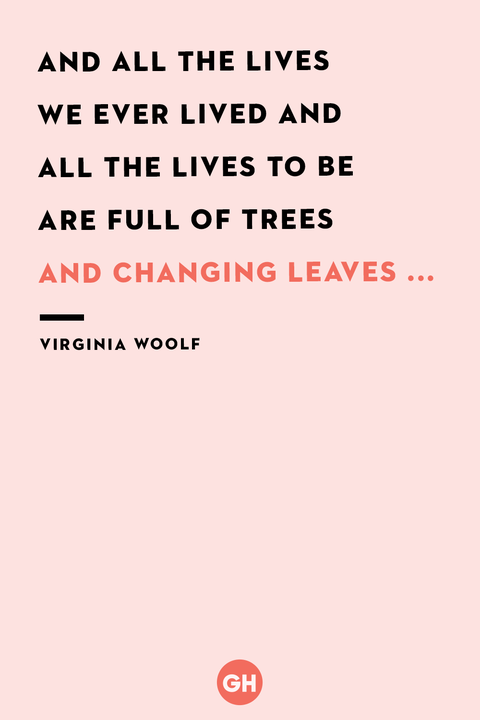 fall quotes   virginia woolf