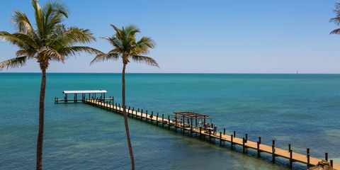 Body of water, Coastal and oceanic landforms, Water, Horizon, Waterway, Coast, Ocean, Sea, Pier, Arecales,