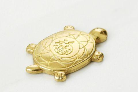 金色的迷你烏龜