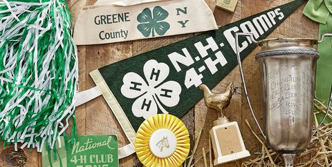 4-H, antiques, collectibles, trophies, ribbons