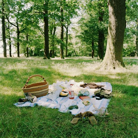 4th of july activities - pack a picnic