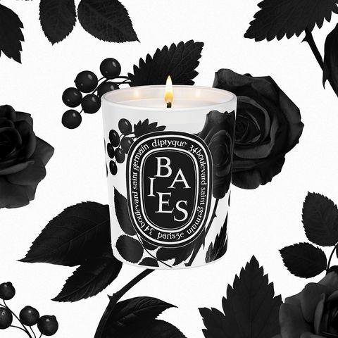 Illustration, Black-and-white, Font, Plant, Style,