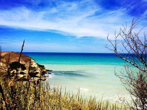 Natural landscape, Coastal and oceanic landforms, Landscape, Ocean, Shore, Azure, Coast, Beach, Twig, Calm,