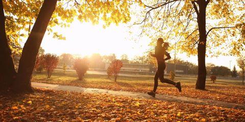 Energie behouden in de herfst