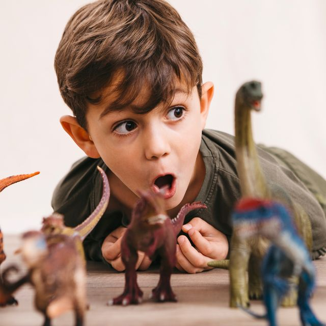 5 year old boy with dinosaur toys