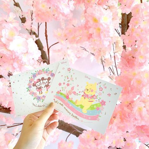 Blossom, Pink, Spring, Cherry blossom, Flower, Watercolor paint, Plant, Hand, Illustration, Pattern,