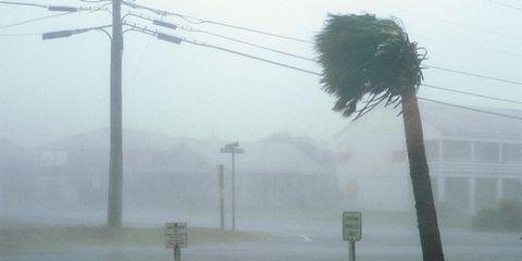Rain Wind Hurricane Bad Weather
