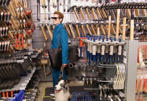 Dog breed, Carnivore, Dog, Bag, Street fashion, Companion dog, Retail, Sporting Group, Dog sports, Canidae,