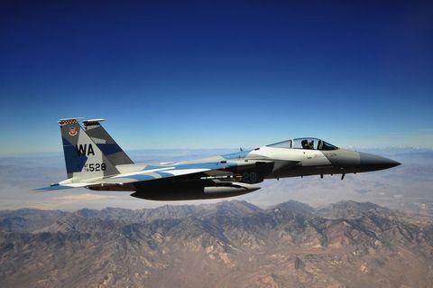 「F-15 イーグル」F-15C Eagle of the 65th Aggressor Squadron