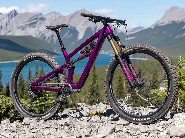 a purple mountain bike