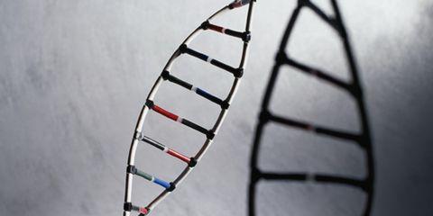 DNA Strand Gene
