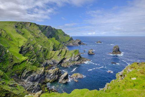 Reserva natural nacional de Hermaness, en las islas Shetland, Escocia
