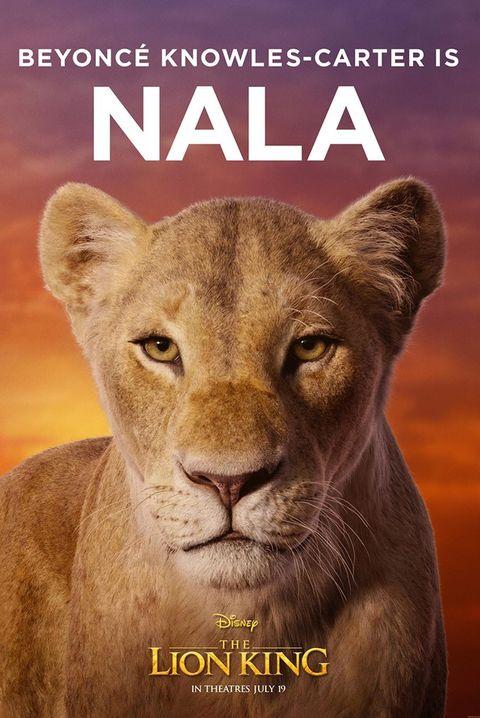 Wildlife, Mammal, Lion, Felidae, Big cats, Text, Whiskers, Terrestrial animal, Organism, Carnivore,