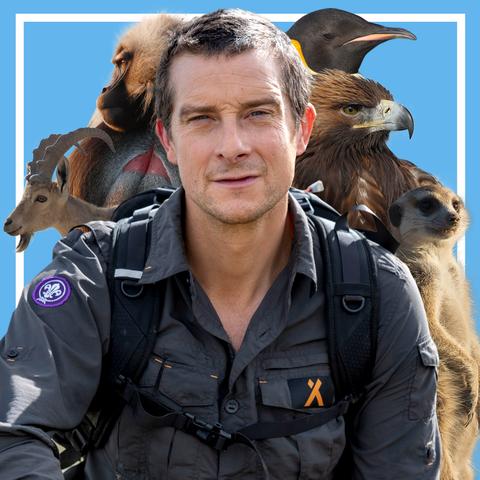 Vertebrate, Wildlife biologist, Bird, Wildlife, Zookeeper, Falconiformes, Fawn,