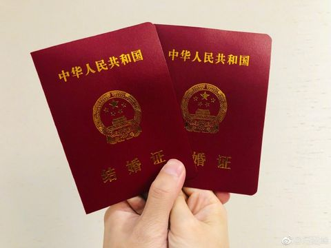 Identity document, Passport, Text,