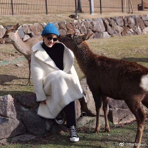 Goats, Goat, Photography, Adaptation, Herder, Smile, Livestock, Llama, Goatherd, Fawn,