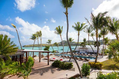 Resort, Vegetation, Tree, Vacation, Palm tree, Sky, Tropics, Swimming pool, Real estate, Arecales,