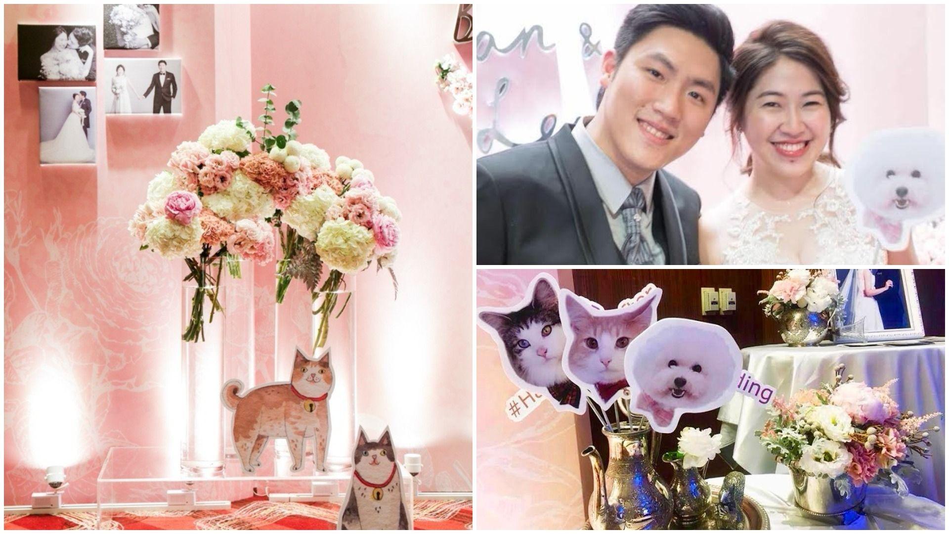 寵物,婚禮