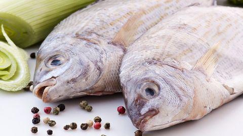 vissen-eten