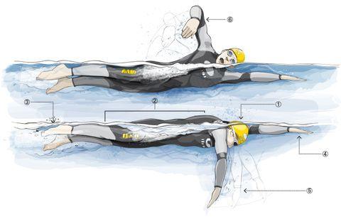 beginner swimming tips for triathlons