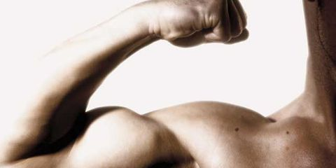 BicepsPic.jpg
