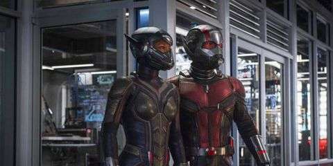 ant man and the wasp trailer