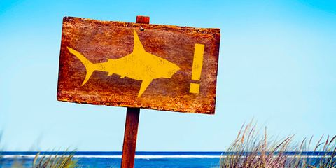 Natural landscape, Landscape, Amber, Grass family, Shore, Sign, Signage, Rectangle, Paint, Sand,