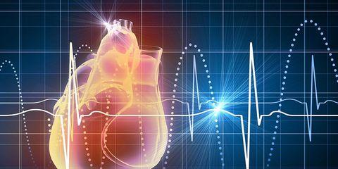 3D virtual heart