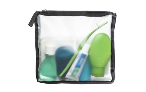 Brookstone Travel Bag