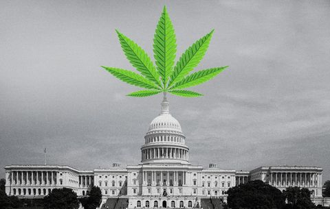 This Bill Would Eliminate the Federal Ban on Marijuana