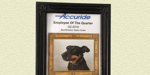 dog wins employee of the month