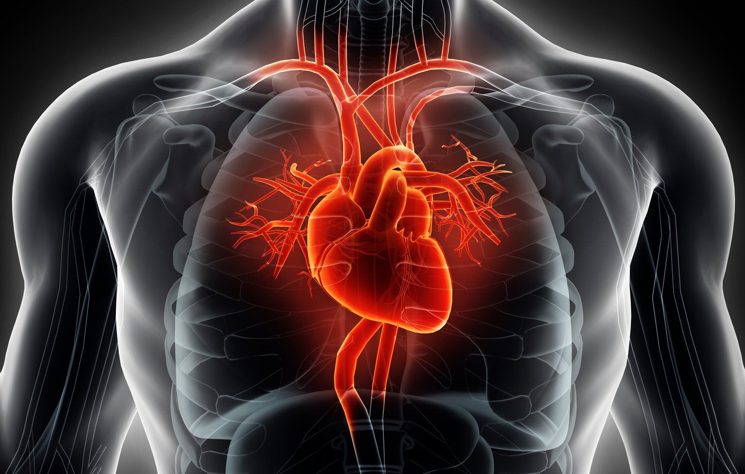 How To Use Heart Rate Training In Your Workouts Why Work Out Superset Circuit Hiit Pinterest With A Monitor