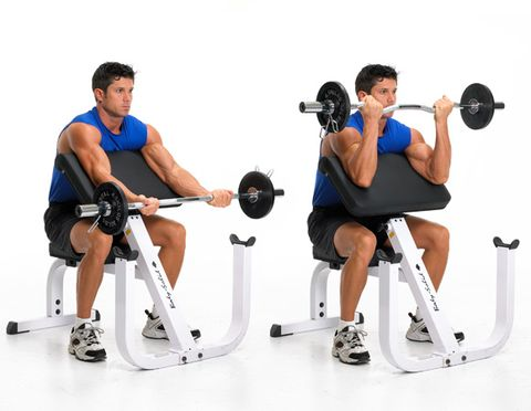 preacher curls-Biceps Workout