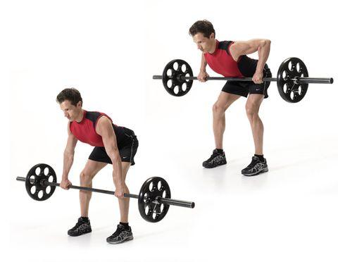 Bicep Workout Bodybuilding