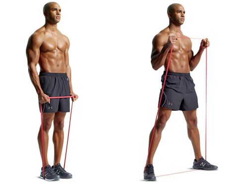 Bicep Workout Increase Size