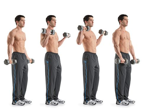 ZOTTMAN CURL-Biceps Workout