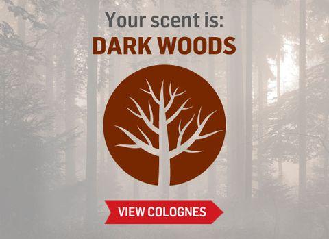 dark-woods.jpg
