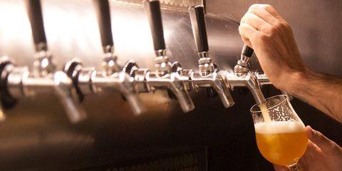 long lost beer ingredient ale vs lager