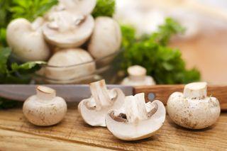 mushrooms on a plate