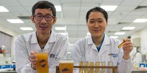 new probiotic beer