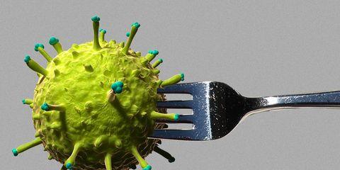fat virus