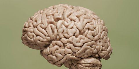 brain benfits keep body in shape