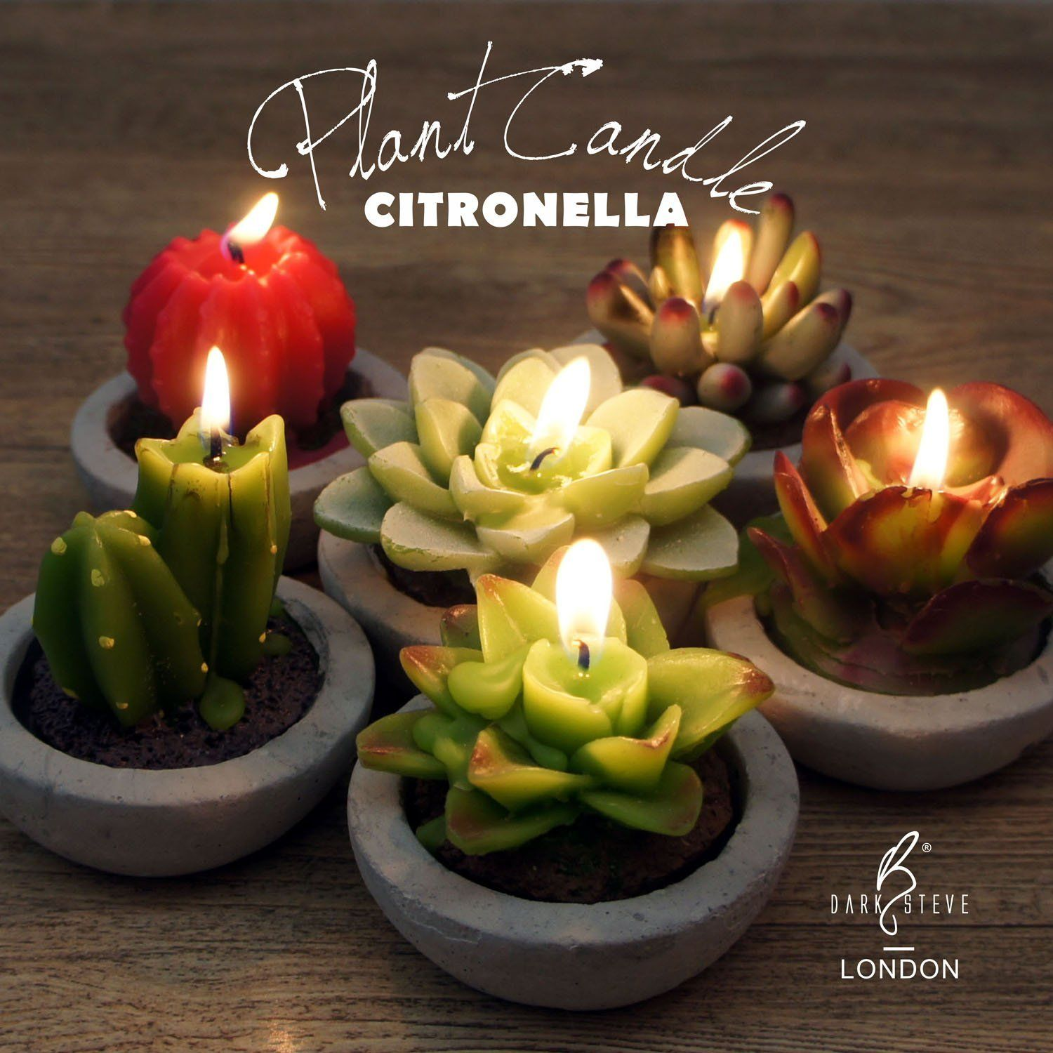 These Adorable Succulent Candles Keep Mosquitos Away
