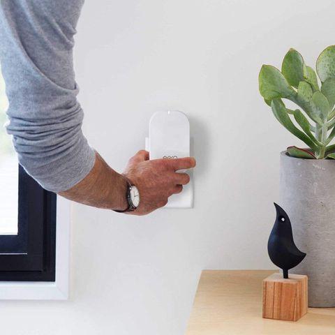 White, Flowerpot, Houseplant, Wall, Vase, Shelf, Room, Furniture, Hand, Cactus,