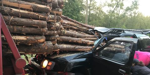 Load of Logs Smashes through Windshield, but There's a Happy Ending