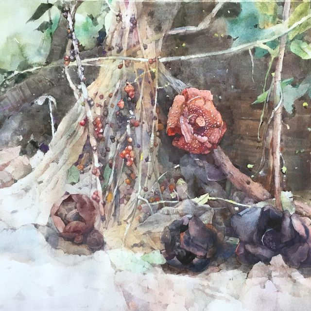 Watercolor paint, Painting, Branch, Tree, Paint, Plant, Still life, Art, Visual arts, Twig,
