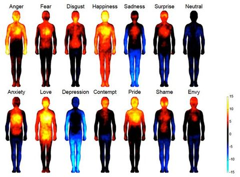You Really DO Feel Love in Your Heart: Your Body on Emotions