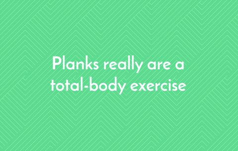 Planks really are a total-body exercise