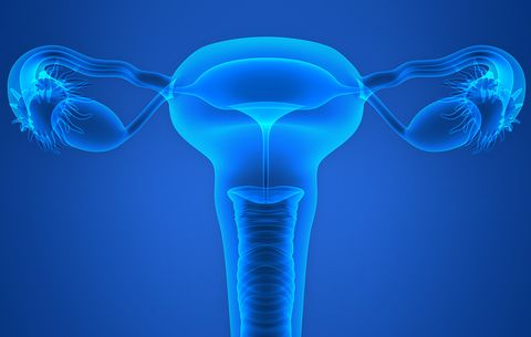 Shorter Periods: What You Need To Know If Your Periods Are